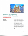 guidelines e1399597785253 - Archdiocesan Guidelines